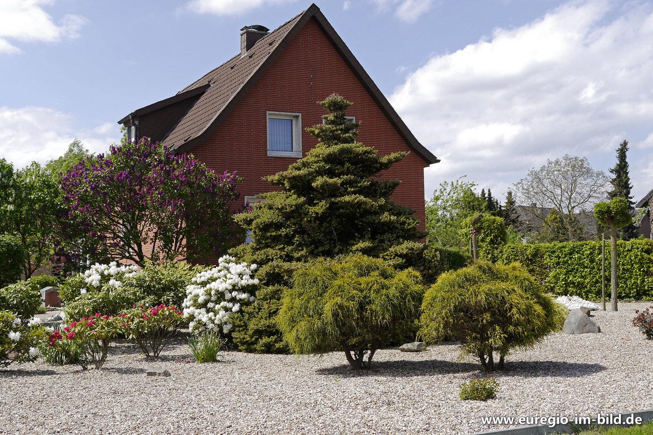 Gartengestaltung mit Kies und immergrünen Büschen - Euregio ...